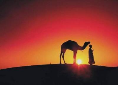 20090915134629-paz-en-el-desierto.jpg
