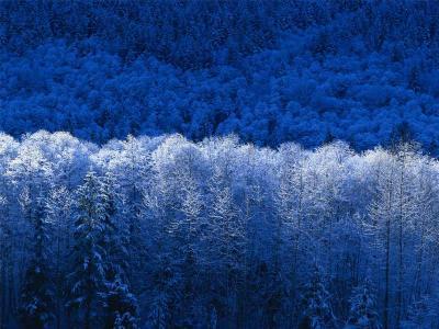 20071102142647-invierno.jpg