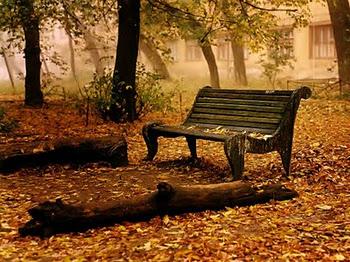 20111123025713-jardin.jpg